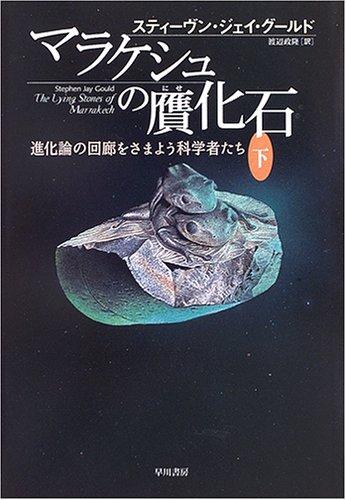 マラケシュの贋化石