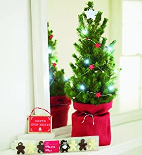 Children's Christmas Tree Gift
