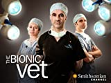 THE Bionic VET: Breezy & Jolly