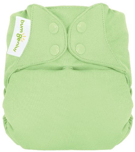 Bumgenius Freetime All In One Cloth Diaper - Snap - Grasshopper, Size One Size front-1009359