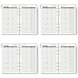 Day Runner Compact Monthly Planner Refill 2016, 3.75 x 6.75 Inches Page Size (063-685Y-16), 4 Packs
