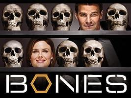 Bones - Season 4