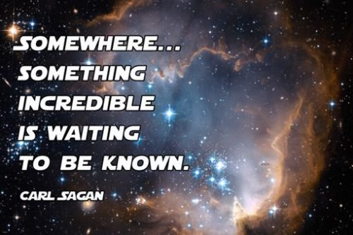 UNIVERSE WITH STARS inspirational poster with CARL SAGAN quote 24X36 space (Space And Universe Poster compare prices)