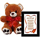 I Love You Gift for Wife, Husband, Boyfriend or Girlfriend - Valentines Day or Anniversary Gift - Framed Poem and Bear
