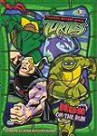 Teenage Mutant Ninja Turtles: Hun on...