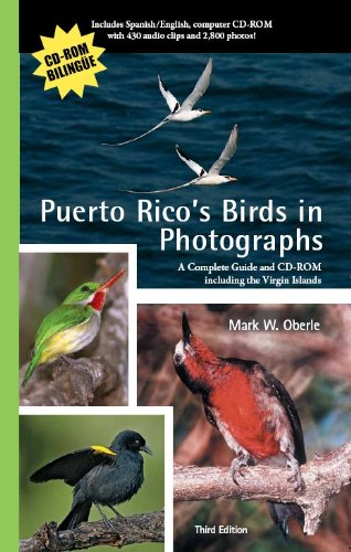 Puerto Rico's Birds in Photographs: A Complete Guide Including the Virgin Islands: With CD-ROM [With CDROM]