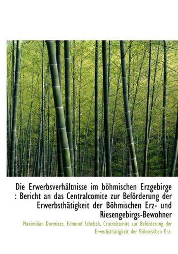 Die Erwerbsverhältnisse im böhmischen Erzgebirge: Bericht an das Centralcomité zur Beförderung der