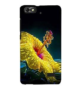 Fuson Premium Printed Hard Plastic Back Case Cover for Huawei Honor 4C