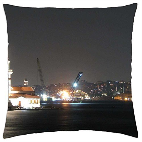 beyond-the-lighthouse-throw-pillow-cover-case-16