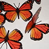 TRANSLUCENT BUTTERFLY MONARCH - 15 TRANSPARENT MONARCH REGULAR SIZE BUTTERFLIES