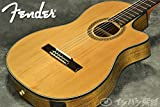 FENDER Acoustic CN-240SCE Thinline Classical フェンダー エレガット クラシックギターナイロンストリングス CN240SCE