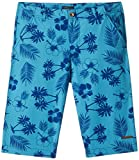 Bells & Whistles Boys' Shorts (AW15-BSHO-08A_Blue_5 - 6 years)