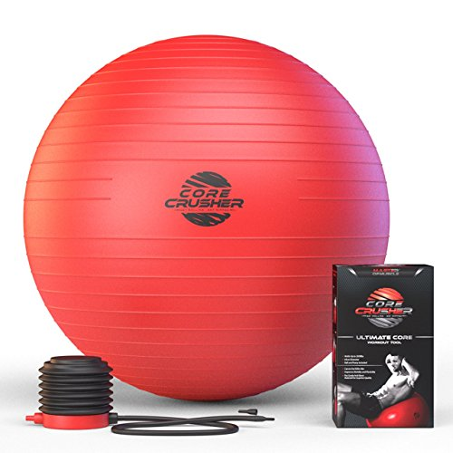 Exercise Ball 65cm Anti-Burst with Pump - Best for Stability - Yoga - Abs- Fitness - Core - Pilates - BONUS workout Ebook Included Featuring 20 Core Crushing Exercises