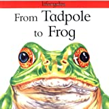 From Tadpole to Frog (Lifecycles) (0531153355) by Legg, Gerald