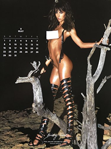 Calendar 2016 playboy End of