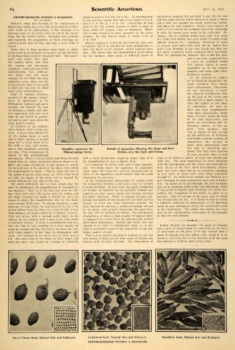 1907 Article Scientific Seed Photomicropraphs Apparatus - Original Print Article
