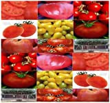 100 MIX BLEND ~VARIOUS VARIETIES Tomato seeds ALL HEIRLOOMS ~ OUR MOST POPULAR