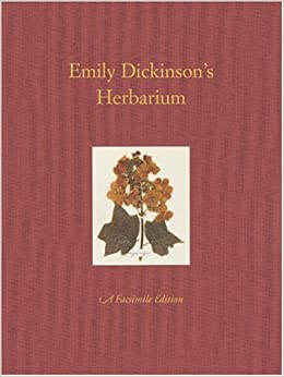 did emily dickinson wrote essays and novels Emily dickinson wrote poetry how many novels did emily dickinson write emily dickinson wrote poetry only a few of these poems were published in her lifetime.