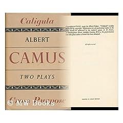 Albert Camus Le Malentendu Dissertation