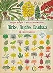 Birke, Buche, Baobab: B�ume und Str�u...