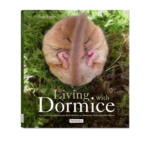 living-with-dormice-the-common-dormouse-real-rodent-or-phantom-of-the-ancient-wood