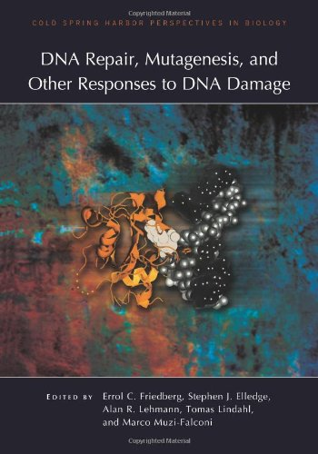 Dna Repair, Mutagenesis, And Other Responses To Dna Damage (Cold Spring Harbor Perspectives In Biology)
