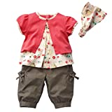 Sanwood Baby Girls Kids Fruits Pattern Top+Pants+Hat Set Outfits 0-3 Years Clothes (S)
