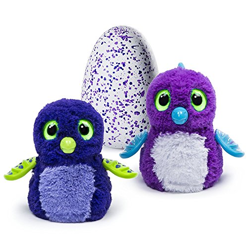 <b>BLUE OR PURPLE DRAGGLE HATCHIMAL</b>