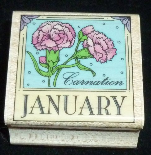 January Carnation Rubber Stamp - 1