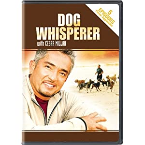 Dog Whisperer With Cesar Millan - Aggression movie