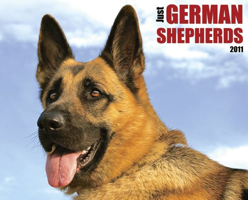 Just German Shepherds Calendar