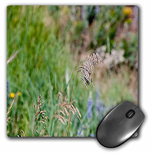 Jos Fauxtographee Realistic - A Weed Floating in the Wind on a Grassy Weed Backdrop with Spots of Blue and Yellow - MousePad (mp_47445_1)
