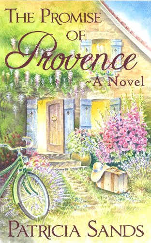 The Promise of Provence ebook