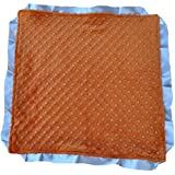 "Cozy Wozy Signature Minky Lovie Sized Baby Blanket With Ribbon Trim Lovie, Rust Orange/Silver, 18"" X 18"""