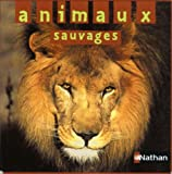 echange, troc Rod Campbell - Animaux sauvages