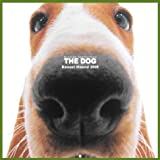 Artlist Collection the Dog 2005 Calendar Basset Hound
