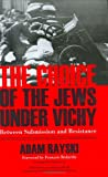 img - for Choice Of The Jews Under Vichy: Between Submission And Resistance book / textbook / text book