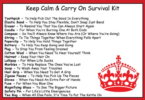 Keep Calm Carry On Survival Kit In A Can Humorous Novelty Fun Gift ...