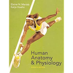 Amazon.com: Human Anatomy And Physiology (9780805359107): Elaine ...