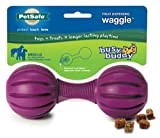 PetSafe Busy Buddy Waggle Dog Toy, Medium/Large