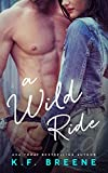 A Wild Ride (Jessica Brodie #3) (Jessica Brodie Diaries) (English Edition)