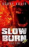 Slow Burn: Dead Fire, Book 4 (Slow Burn Zombie Apocalypse Series)