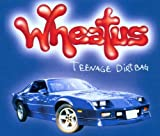 Wheatus Teenage Dirt Bag