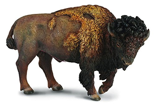 CollectA American Bison Figure - 1