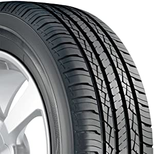 BFGoodrich Advantage T/A All-Season Tire - 205/65R15 94HR