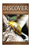 img - for Super Strong and Powerful Insects - Discover: Early reader's wildlife photography book book / textbook / text book