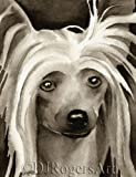 """""""Chinese Crested"""" Sepia Watercolor Drawing Art Print Signed by Artist DJ Rogers"""
