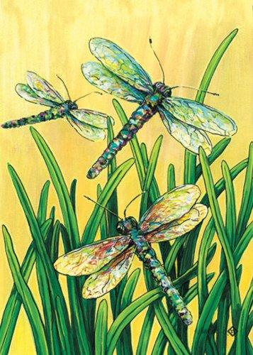 Toland Home Garden Dragonflies In Flight Garden Flag