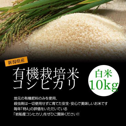 【お土産】有機栽培米コシヒカリ 白米(精米) 10kg 新米/化学肥料ゼロで育てた新潟産有機米