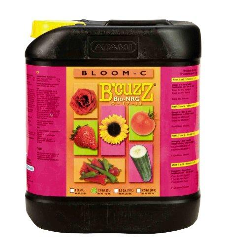 Foods That Contain Ascorbic Acid